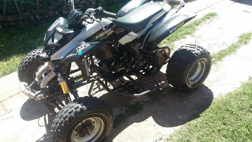 Panther 250