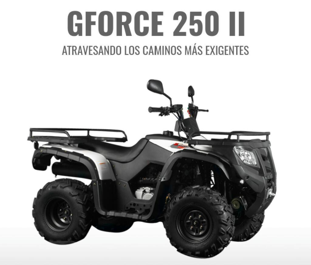 Cuatriciclo Zanella Gforce 250 Ii