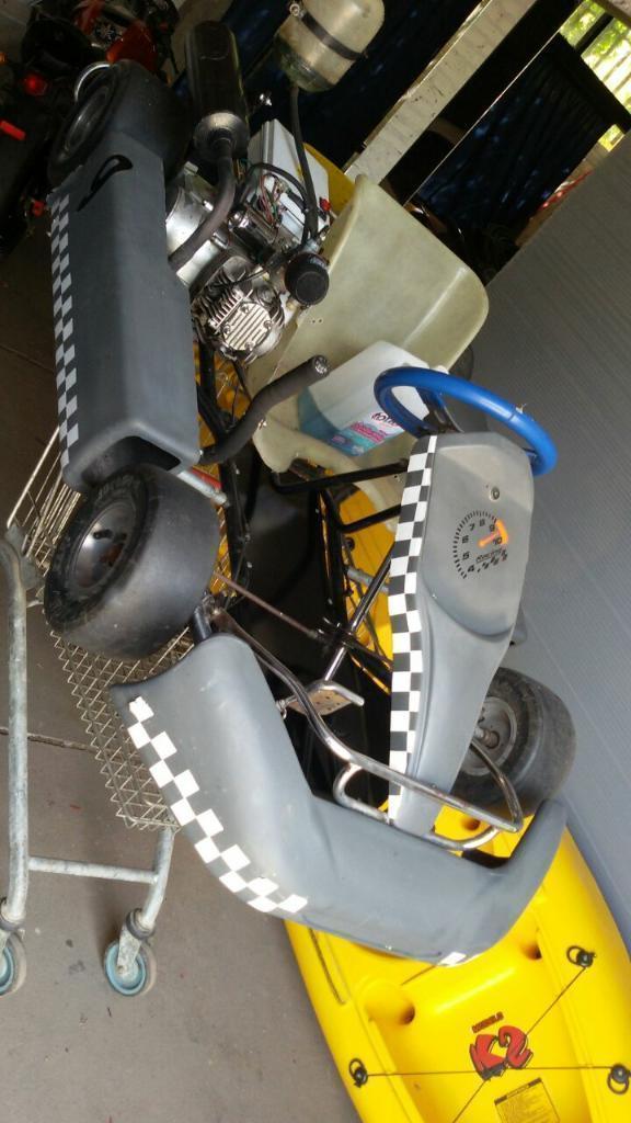 Vendo Karting Motor 110cc 0km
